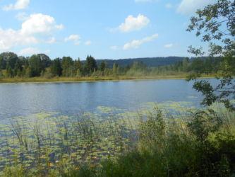 Lac Malpas